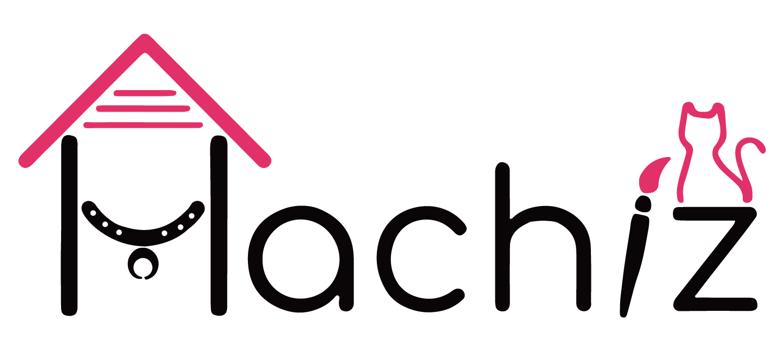 Hachiz Store